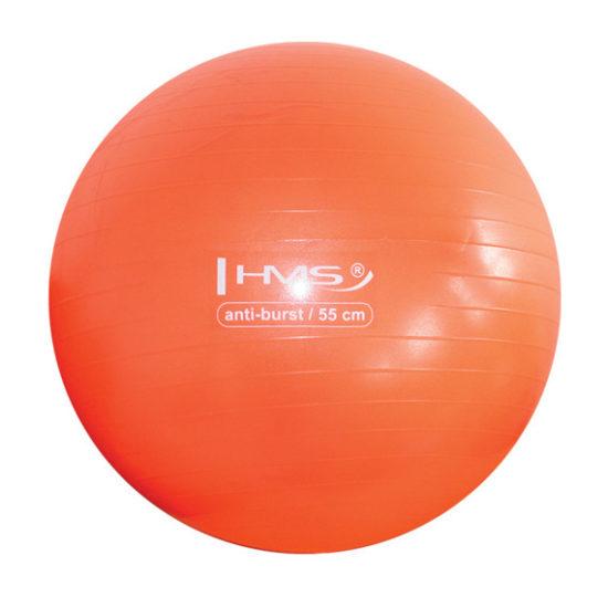 Gymnastikboll Anti-Burst 55cm